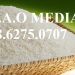 Dịch vụ làm công bố tiêu chuẩn chất lượng gạo