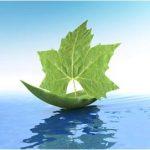 Làm giấy phép cam kết bảo vệ môi trường tại tphcm