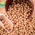 Loại Giấy phép nào cần cho cơ sở sản xuất hạt đậu nành sấy