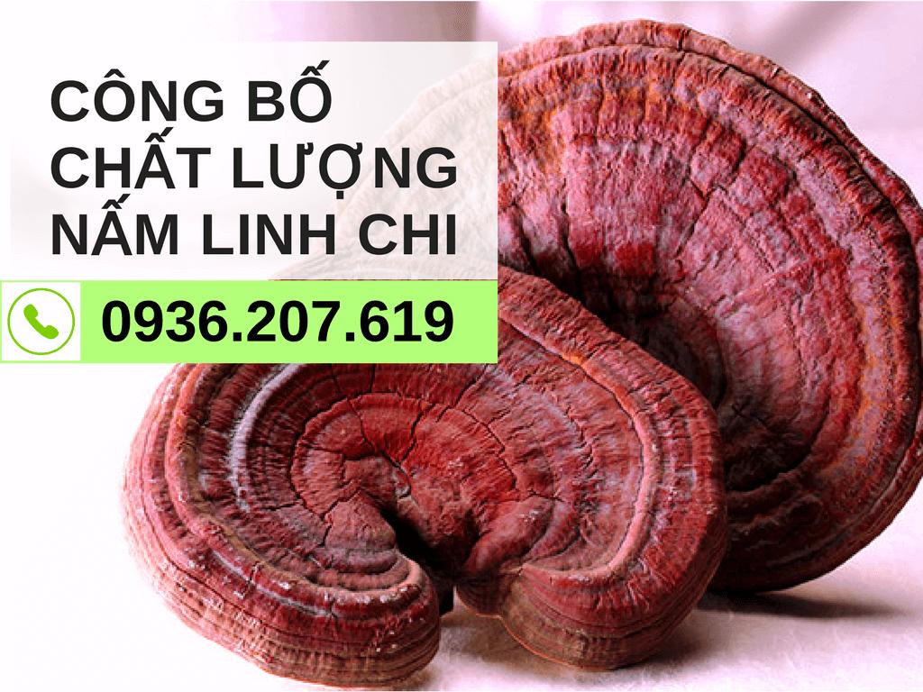 cong-bo-chat-luong-san-pham-nam-linh-chi