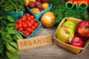 Thủ tục cấp giấy phép an toàn vệ sinh thực phẩm