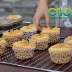 Xin giấy phép vệ sinh an toàn thực phẩm cho cơ sở sản xuất bánh bông lan