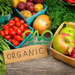 Chi phí dịch vụ đăng ký vệ sinh an toàn thực phẩm