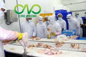 Xử phạt hành chính cơ sở giết mổ gia cầm không có giấy chứng nhận vệ sinh an toàn thực phẩm