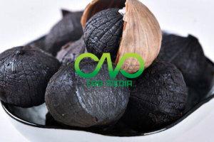Công bố tiêu chuẩn chất lượng tỏi đen