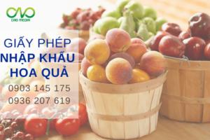 Giấy phép nhập khẩu hoa quả vào Việt Nam như thế nào?