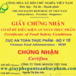 Mẫu giấy chứng nhận vệ sinh an toàn thực phẩm của Bộ Y Tế cấp