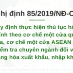 Nghị định 85/2019/NĐ-CP chính phủ quy định thực hiện TTHC theo cơ chế một cửa quốc gia, ASEAN và kiểm tra chuyên ngành đối với hàng hóa xuất khẩu, nhập khẩu