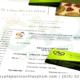 Tư vấn kiểm nghiệm và công bố hạt đậu dinh dưỡng