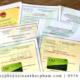 Đăng ký giấy phép xuất khẩu tinh bột sắn