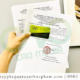 Đăng ký giấy chứng nhận lưu hành tự do bánh trung thu như thế nào?