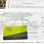Dịch vụ làm giấy phép lưu hành tự do sản phẩm chà bông