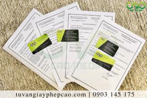 Bộ Y Tế cấp giấy chứng nhận y tế đối với nhóm sản phẩm nào?