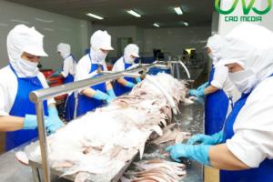 Thủ tục xin giấy phép vệ sinh an toàn thực phẩm cho cơ sở chế biến hải sản