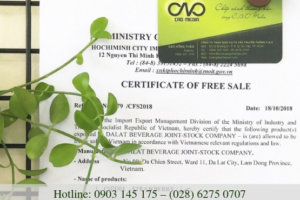 Những giấy phép cần thiết khi lưu hành sản phẩm tự do xuất khẩu hàng hóa