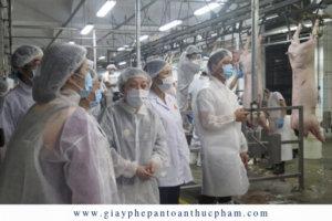 Ban Quản lý an toàn thực phẩm thành phố Hồ Chí Minh xuyên đêm khảo sát các chuỗi cung ứng thịt heo vào thành phố